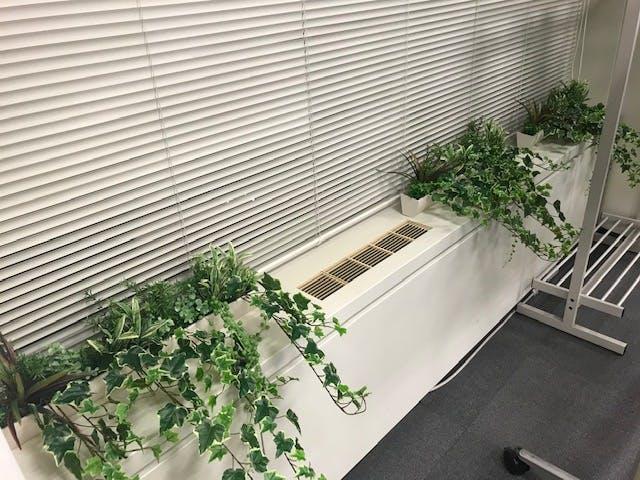 グリーンモード窓際2