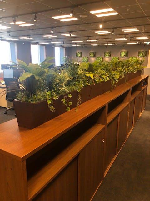 【オフィスの施工事例】オフィスの空間を仕切る為に目隠し用としてグリーンモードをご使用頂きました。
