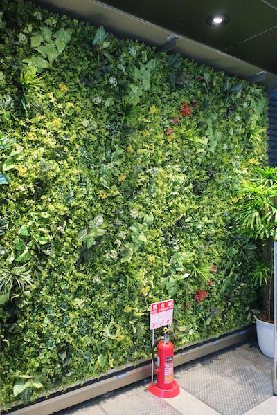 【エントランスの施工事例】壁一面の壁面緑化はインパクトがあり、 思わず立ち止まって見入ってしまいそうです