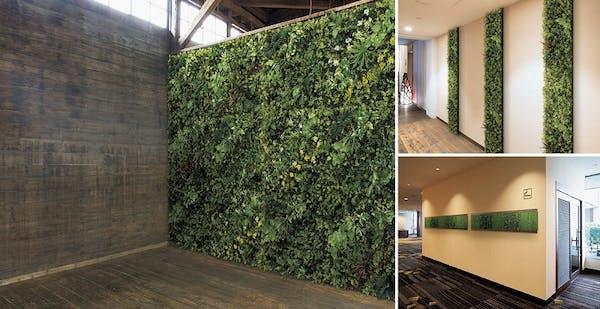 グリーンモード通信【カンタンに壁面緑化『グリーンパネル』のご紹介。<<サンプル確認サービス開始!!>>】