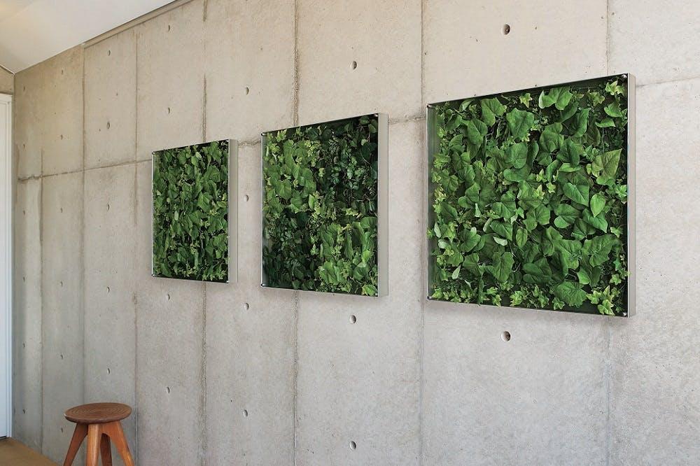 フェイクグリーン 壁掛け ウォールグリーン