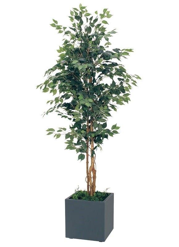 人工樹木フェイカスベンジャミン