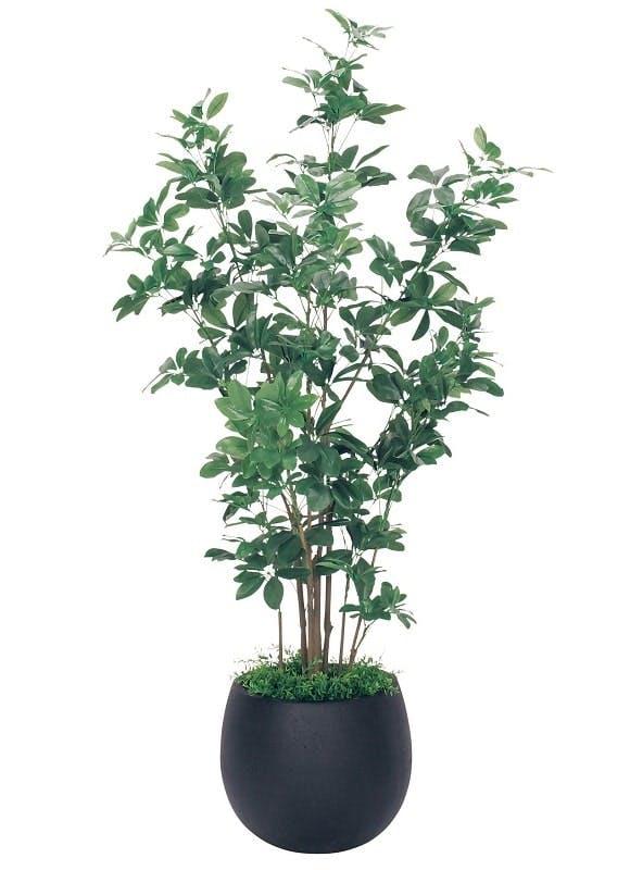 人工樹木シュフレア