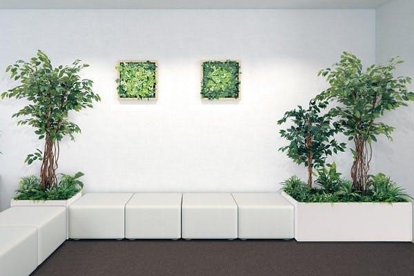 人工樹木のソファ周り事例