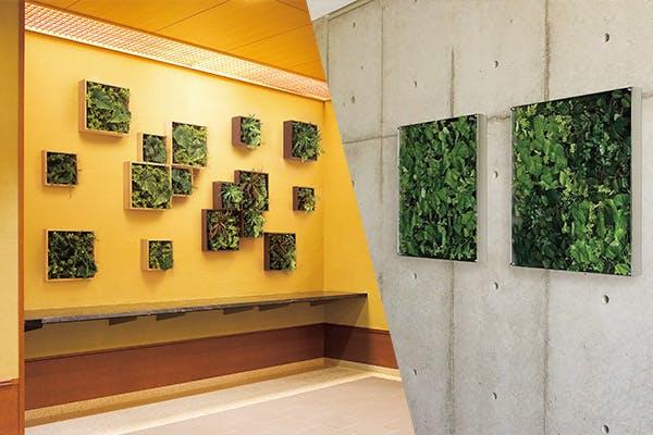 壁面 アート グリーン スタイル 空間 演出