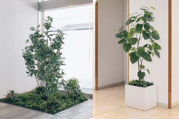 人工樹木 樹木 鉢 自然