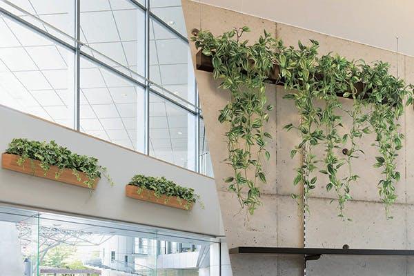 壁面 プランター 上壁 自然 有効利用 グリーンポッド