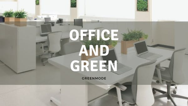 オフィスには観葉植物で癒しの空間づくりがおすすめ