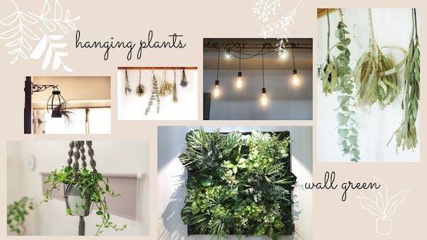 観葉植物で人気の壁掛けスタイル