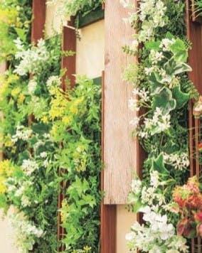 フェイクグリーン大型植物の楽しみ方