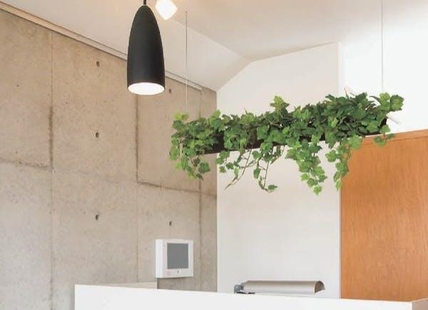 フェイクグリーンの吊り下げ観葉植物