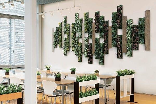 グリーンモード通信【癒しの空間作り。カンタン『壁面緑化』のご紹介!!】